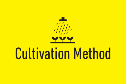 Cultivation Method